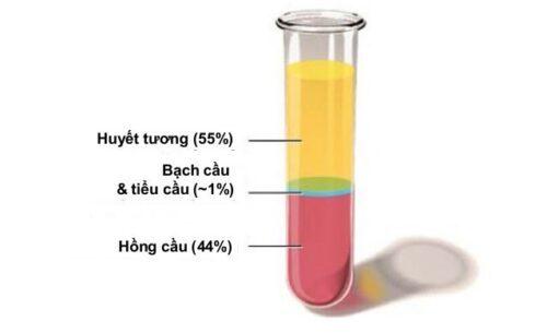 Huyết tương là gì? Vì sao có khả năng kháng vi rút Corona COVID-19 Xu Hướng Đồng Phục - Hotline 0909124112 20190516 144008 859738 tach huyet tuong di.max 1800x1800 1